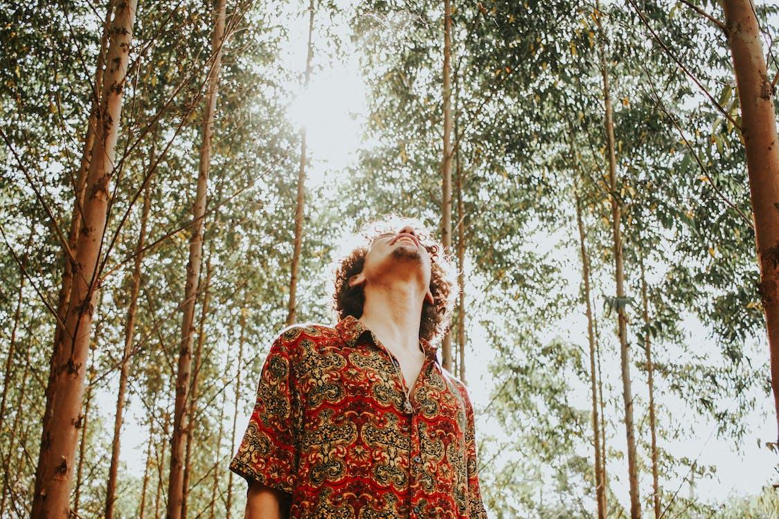 denní světlo, kmeny stromů, kudrnaté vlasy