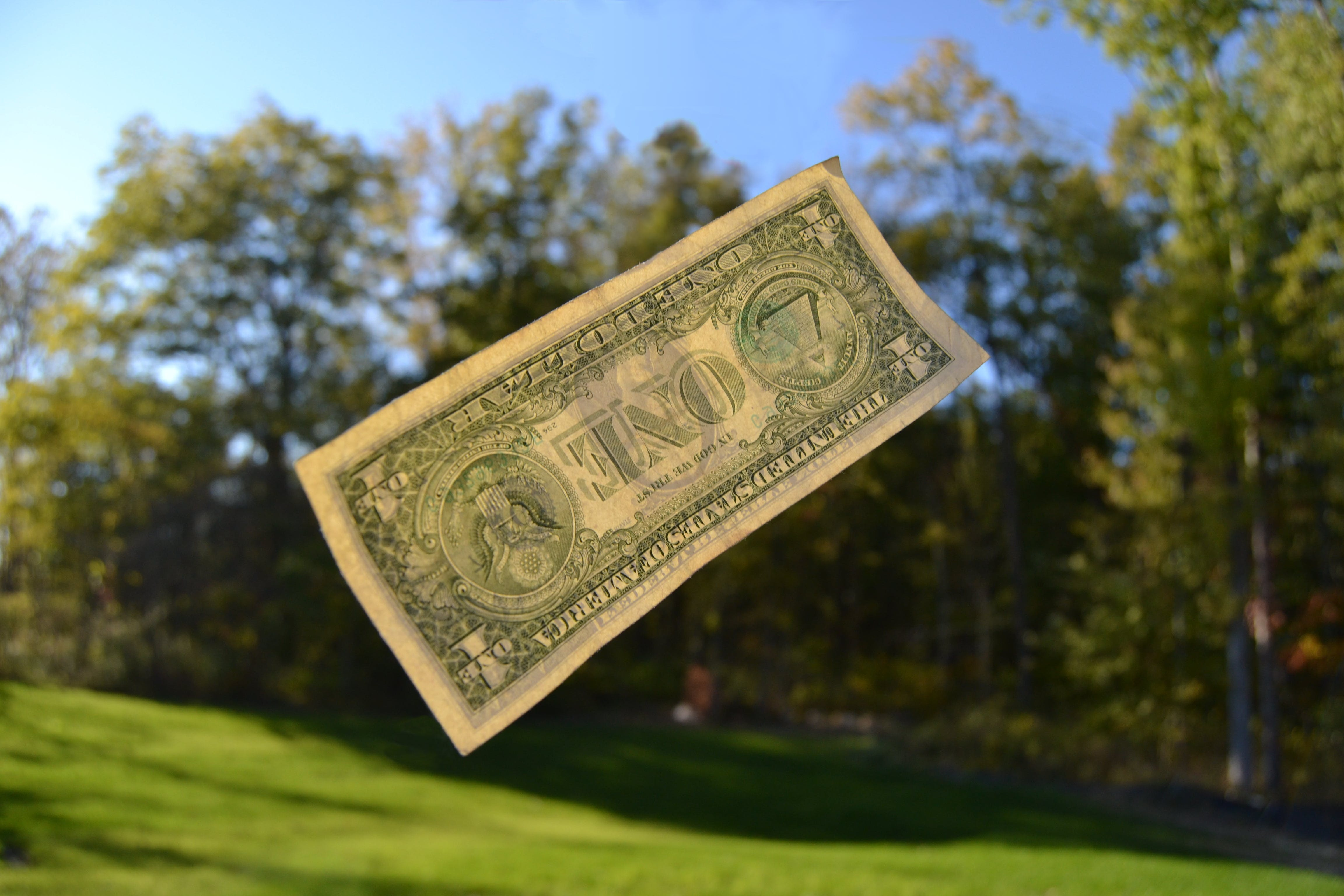 Free stock photo of money, currency, dollars, paper money