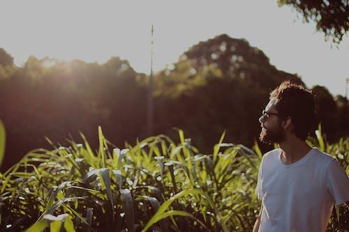 Бесплатное стоковое фото с борода, вид сбоку, глубина резкости, дневной свет