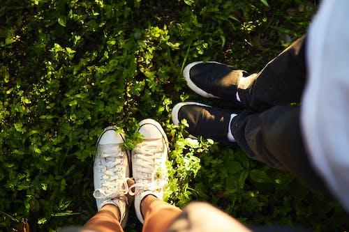 คลังภาพถ่ายฟรี ของ กลางวัน, บด, ผู้คน, รองเท้าผ้าใบ