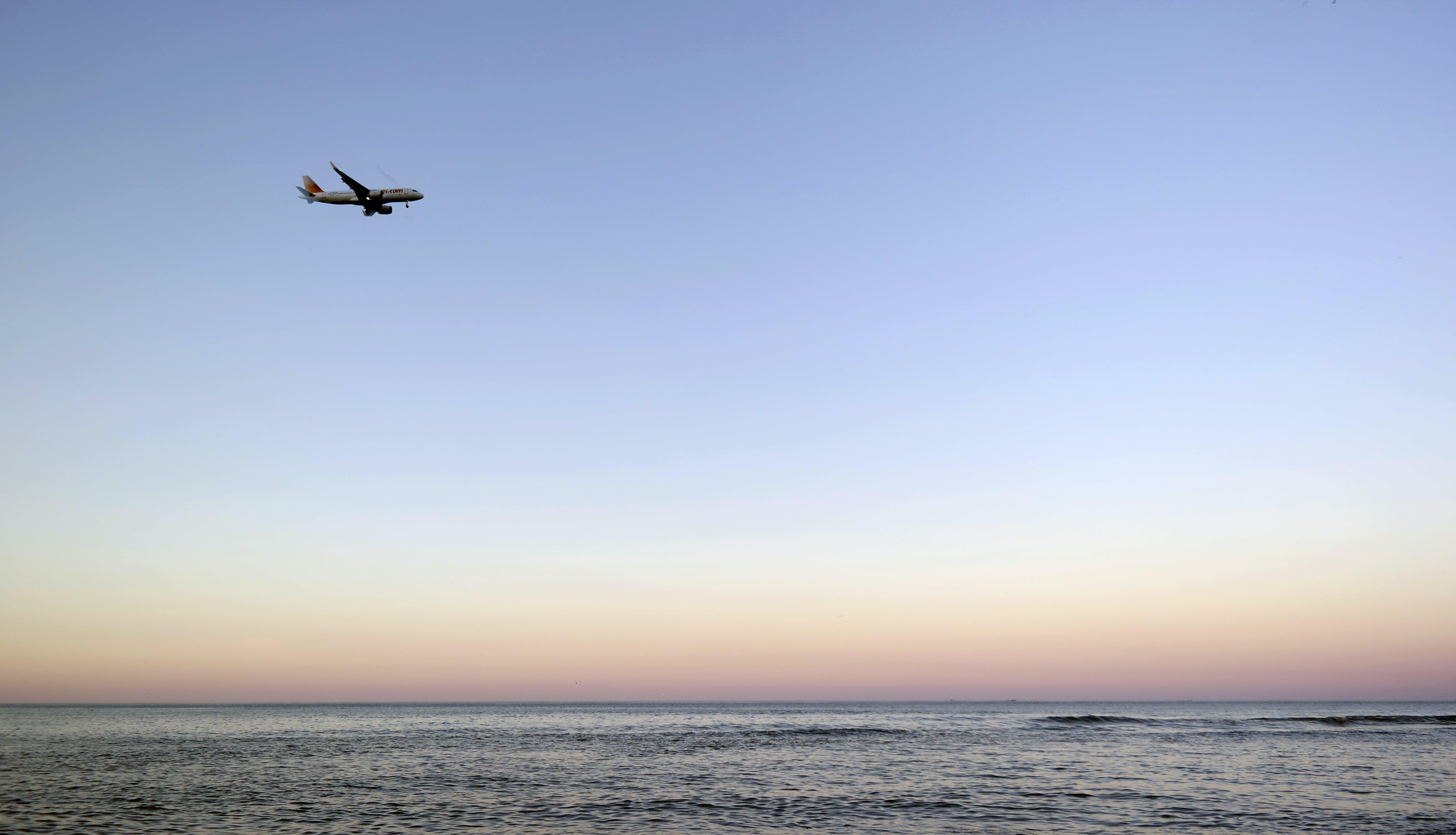 Free stock photo of sea, flight, dawn, landscape