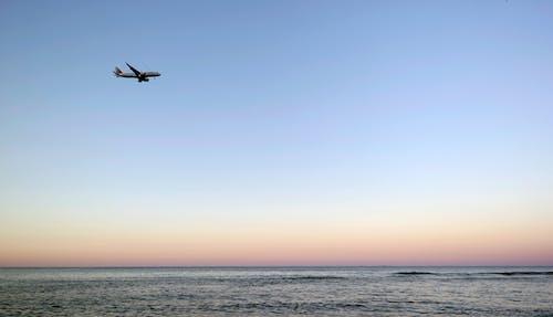 Foto profissional grátis de aeronave, água, alvorecer, beira-mar
