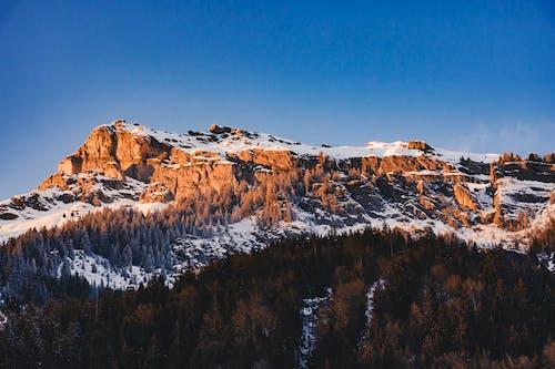 天性, 景觀, 洛磯山脈, 白雪皚皚的山 的 免费素材照片