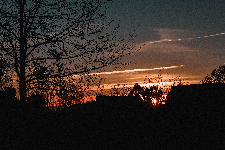 Gratis lagerfoto af por do sol dourado, solnedgang