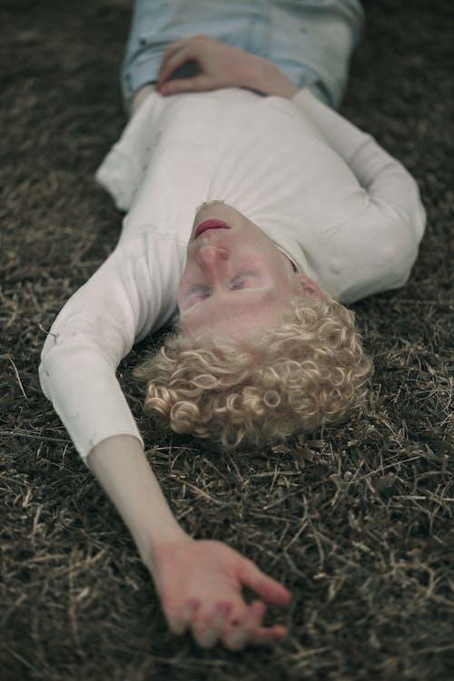 Fotos de stock gratuitas de albino, belleza en la naturaleza, chaval, desaturado