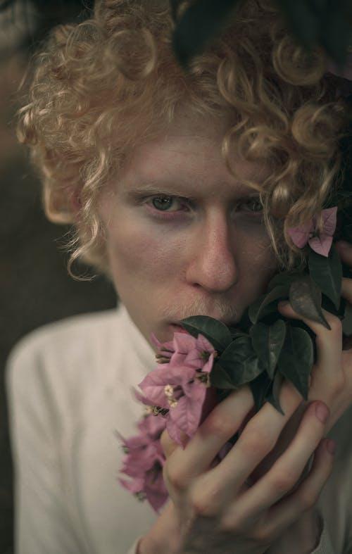 Fotos de stock gratuitas de albino, belleza en la naturaleza, bonito, desaturado