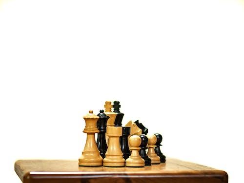 Gratis lagerfoto af hvid baggrund, kamp, marri, skak