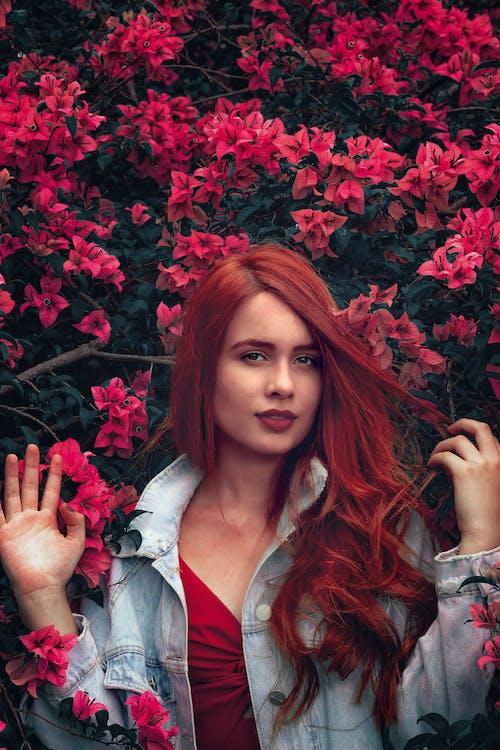 Brezilyalı, güze, güzel, güzel çiçekler içeren Ücretsiz stok fotoğraf