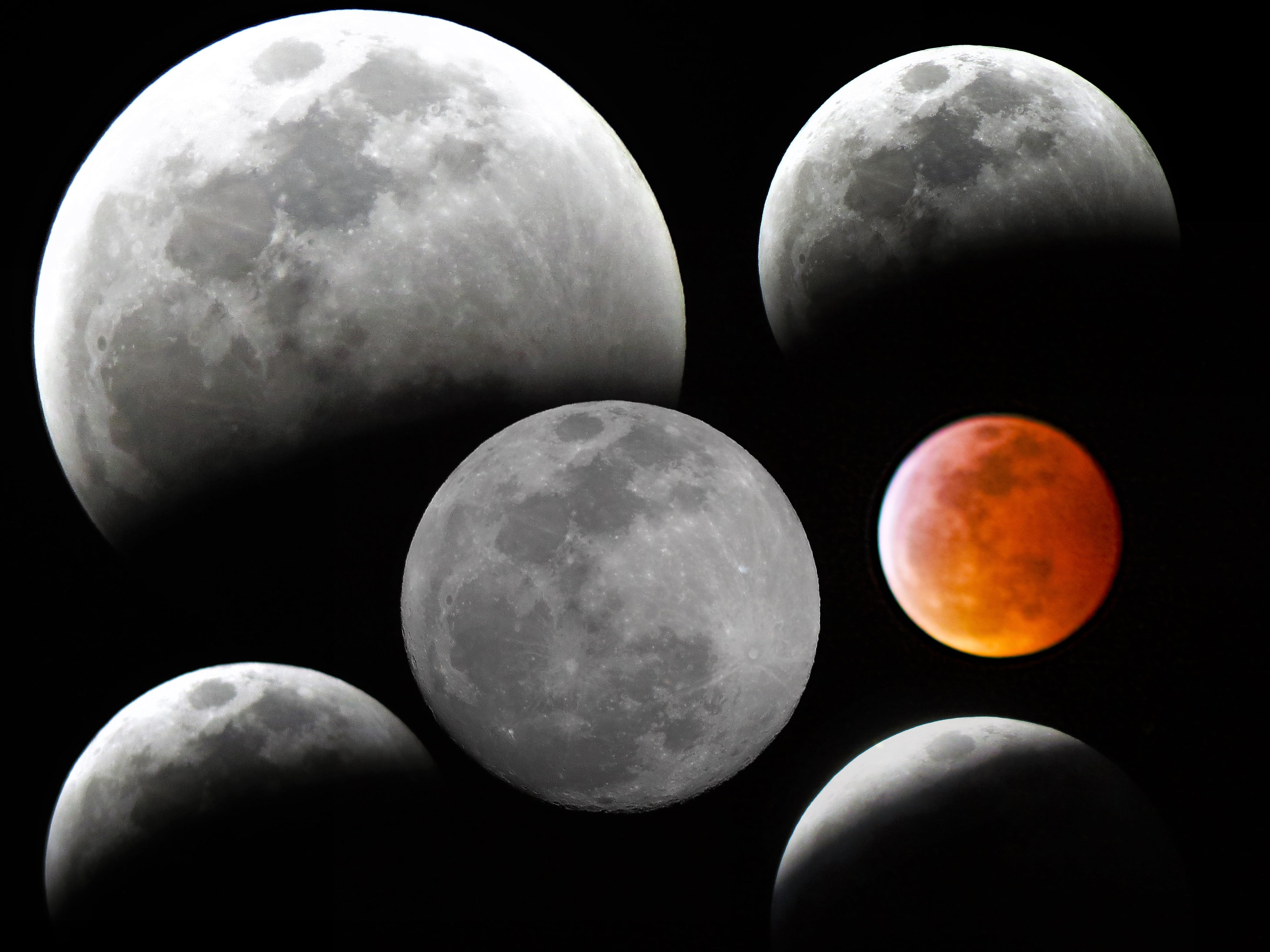 Free stock photo of eclipse, moon