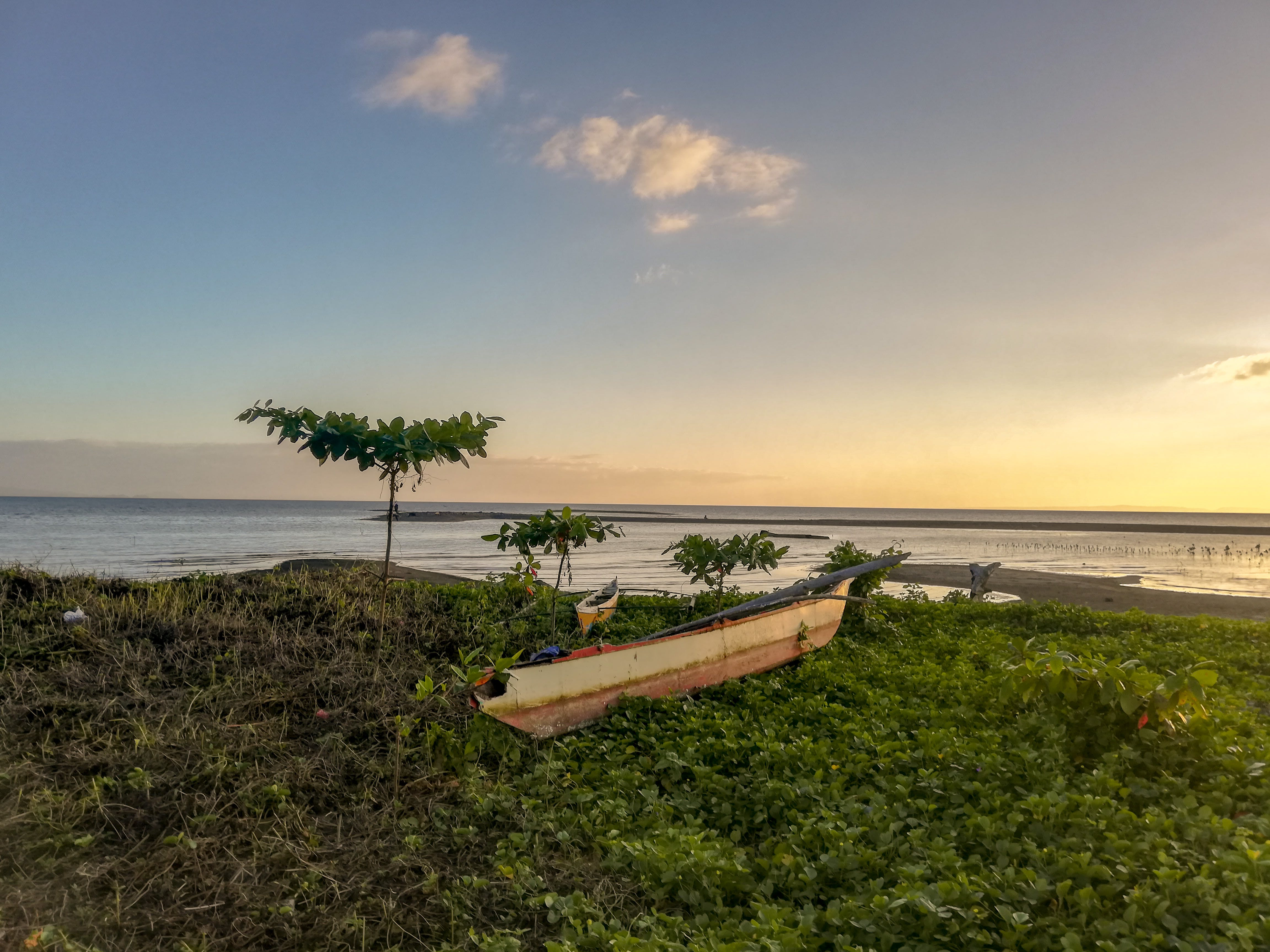 Základová fotografie zdarma na téma člun, fotografie přírody, klid, kokosové palmy
