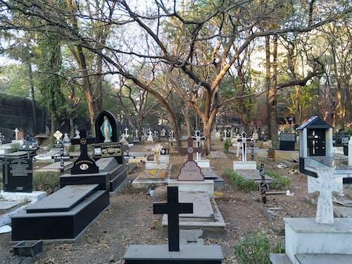 墓地の無料の写真素材