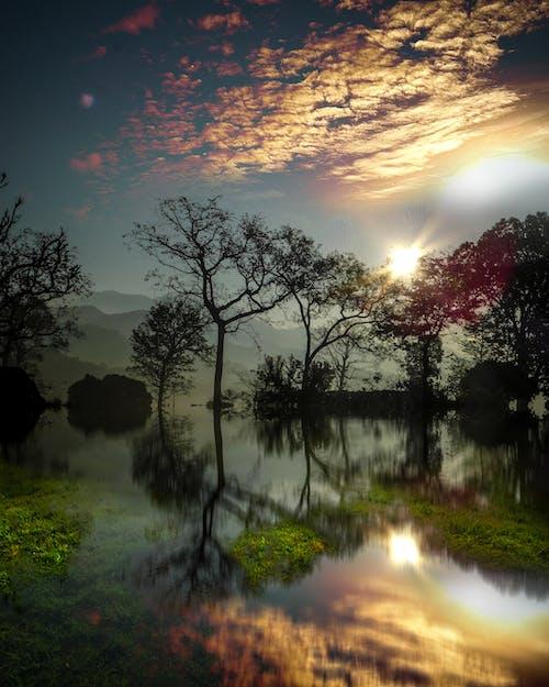 冒險, 反射, 天性, 天空 的 免費圖庫相片