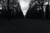 black-and-white, park, germany