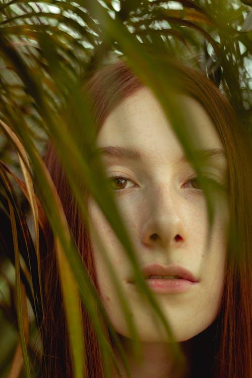 Ilmainen kuvapankkikuva tunnisteilla hiukset, huulet, kasvi, katsominen