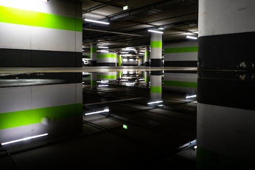 Gratis lagerfoto af farve, grøn, lys, lys refleksioner