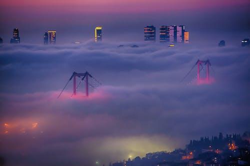 イスタンブール, 夜, 紫, 霧の無料の写真素材