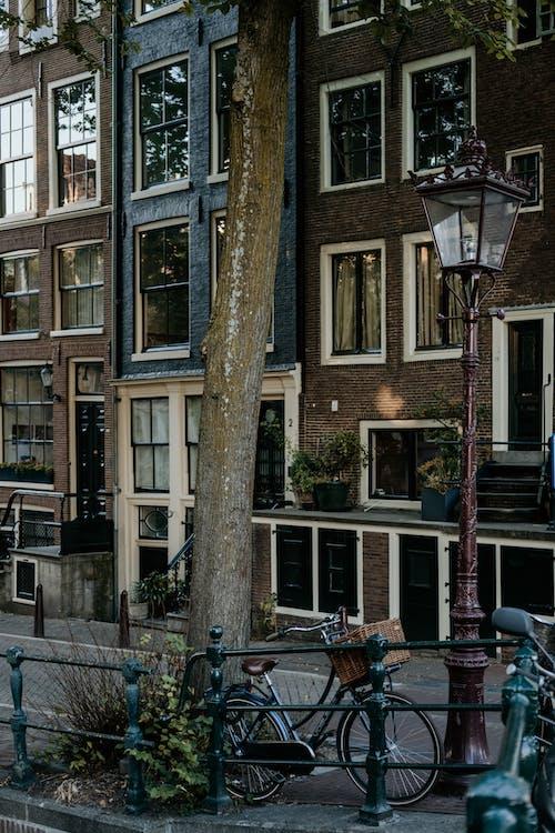 ağaç, apartmanlar, bina, bisiklet içeren Ücretsiz stok fotoğraf