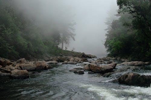 Imagine de stoc gratuită din fotografie cu natură, natură, rezervație naturală
