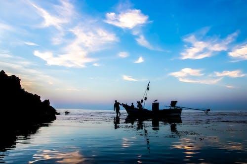 Základová fotografie zdarma na téma dji, dron, odraz, tropický