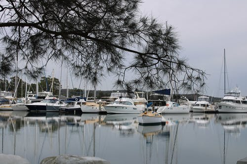 Free stock photo of lake macquarie