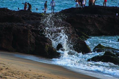 Foto profissional grátis de água branca, cea, fotografia de alta velocidade, malappuram