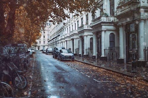 Ảnh lưu trữ miễn phí về Anh, Châu Âu, London, mưa