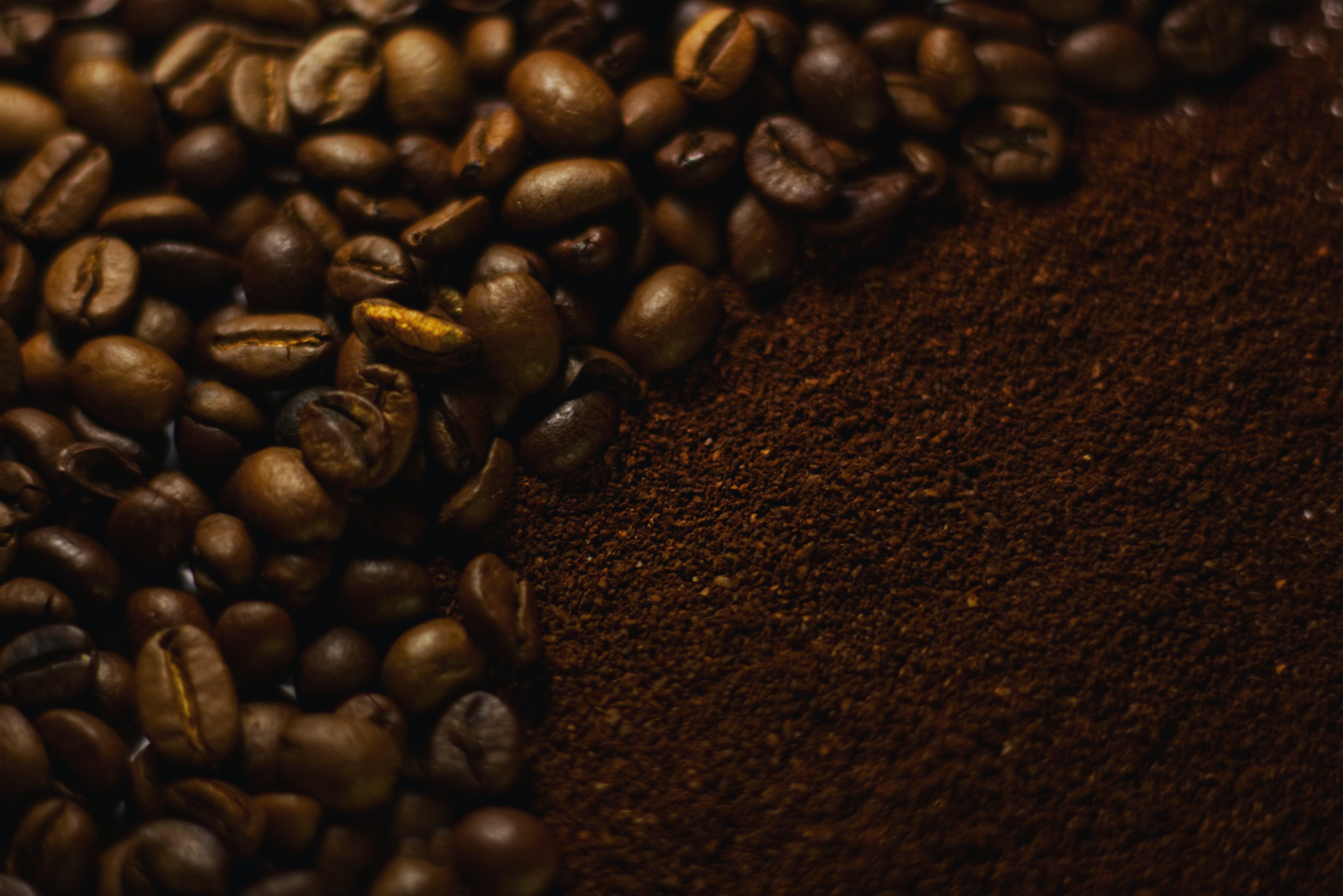 Free stock photo of coffee bean
