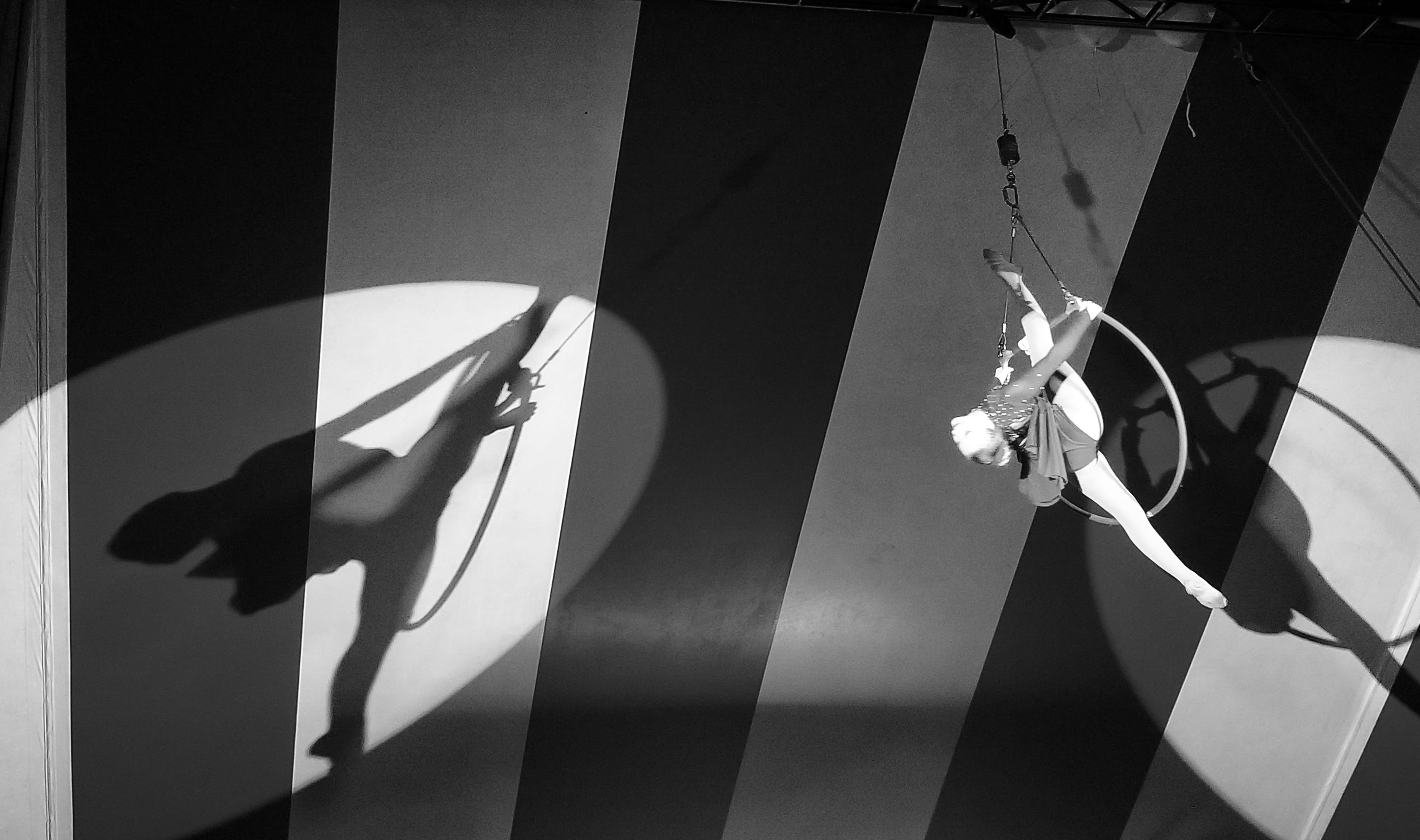 Foto d'estoc gratuïta de art, carpa, circ, nena