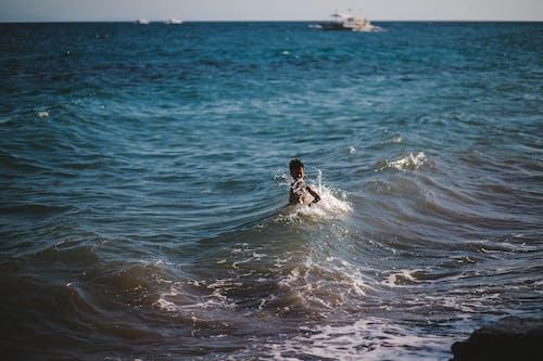 Ingyenes stockfotó álló kép, hullámok, kölyök témában