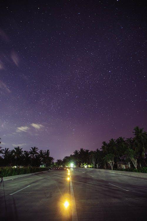 Ingyenes stockfotó celebek, fények, út témában