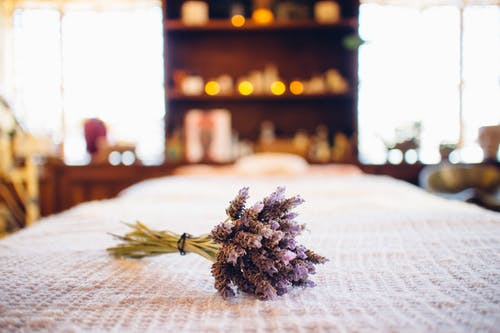 Free stock photo of dried flowers, flowers, lavander, spa massage