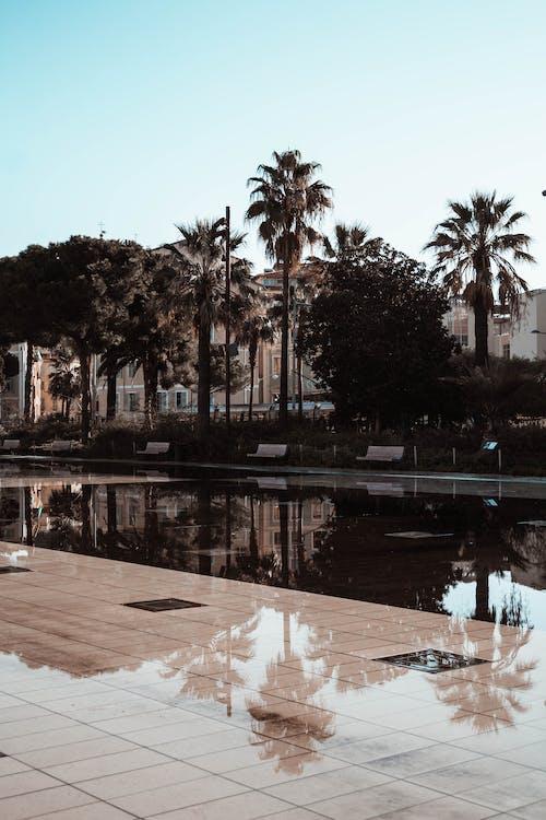 Бесплатное стоковое фото с архитектура, Архитектурное проектирование, вид, вода