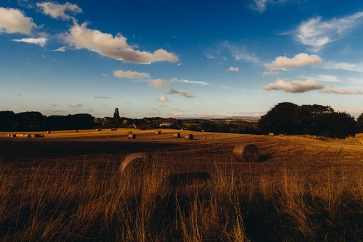 Free stock photo of field, countryside, agriculture, farm