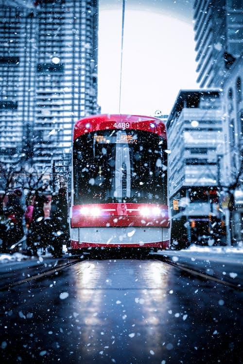 Ilmainen kuvapankkikuva tunnisteilla downtown toronto, julkinen liikenne, kaupunki, kaupunkielämää