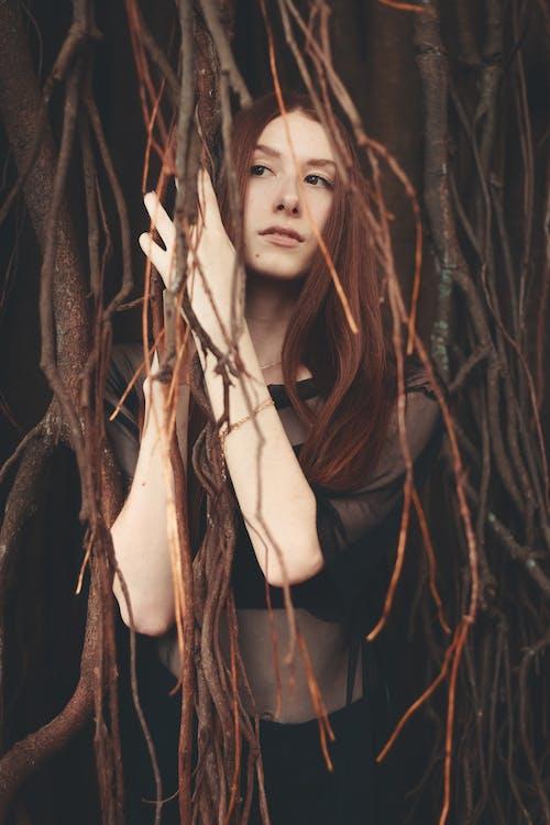 park, rude włosy, środowisko