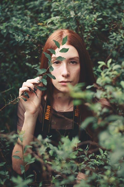 Imagine de stoc gratuită din mediu, păr roșcat, parc
