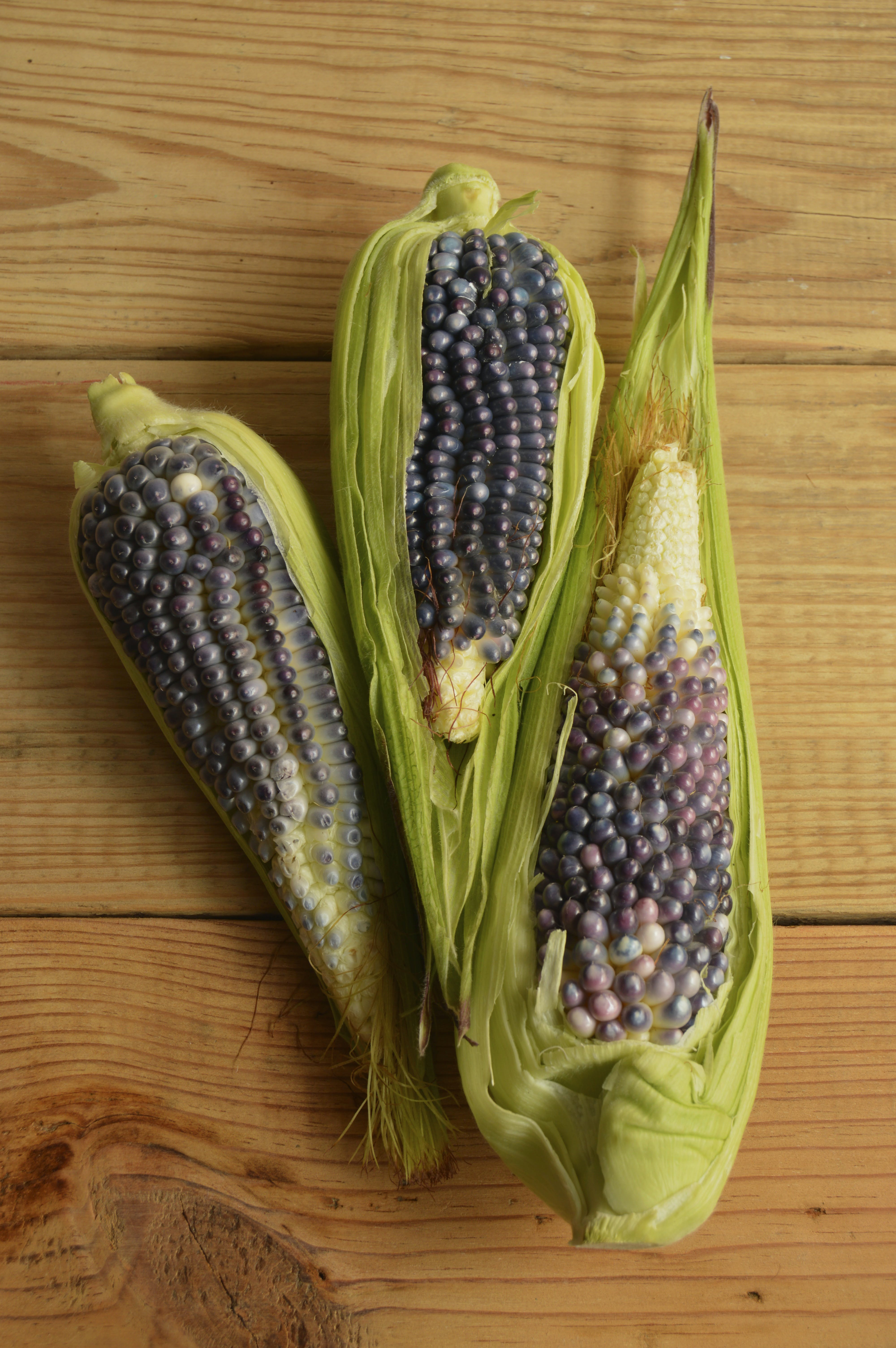 Three Green Corns