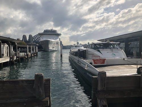 Free stock photo of australia, circular quay, cruise ship, ferry