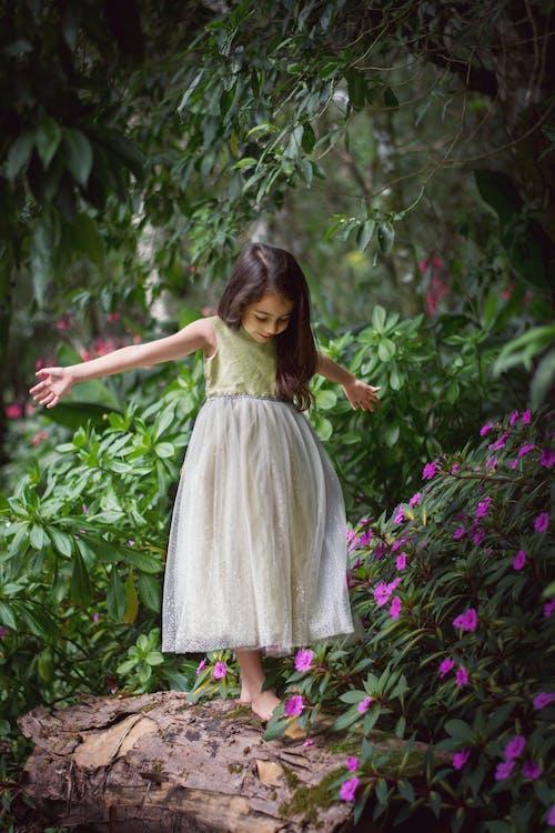 Foto profissional grátis de beleza na natureza, flores, garota