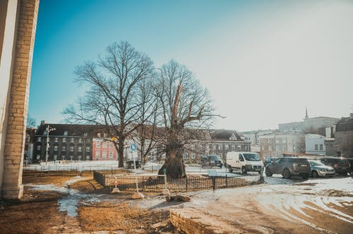 Free stock photo of buildings, love, old town, people