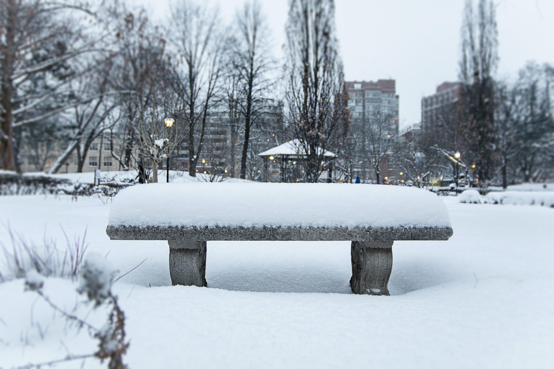 ウィンターパーク, カナダ, スノーベンチ, ダウンタウントロントの無料の写真素材