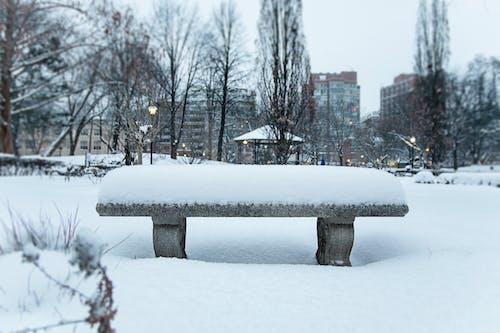 Ilmainen kuvapankkikuva tunnisteilla downtown toronto, Kanada, lumi, penkki