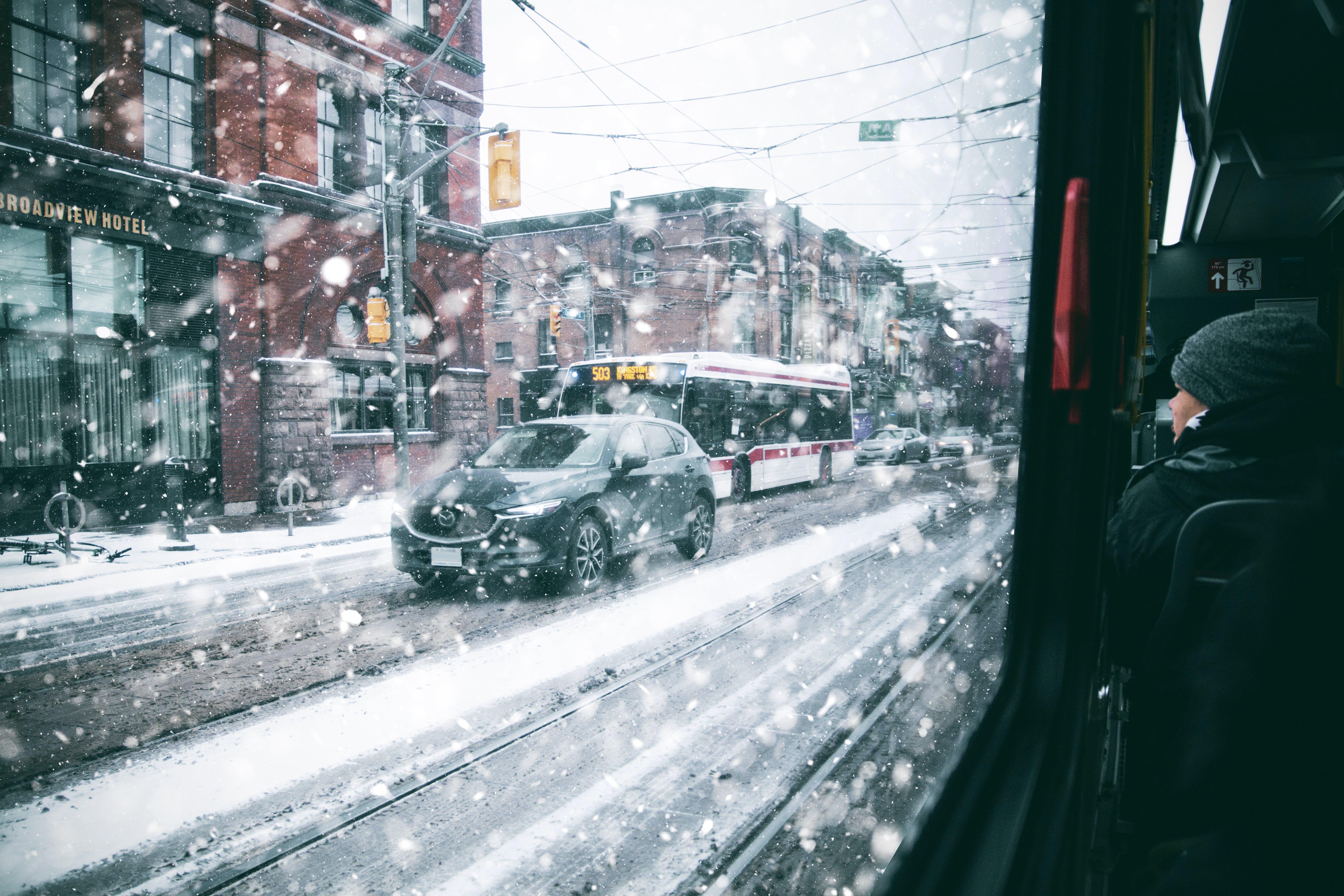 ttc, ウィンドウビュー, カナダ, コートの無料の写真素材