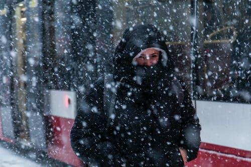 Безкоштовне стокове фото на тему «жінка, застуда, зима, зимове пальто»