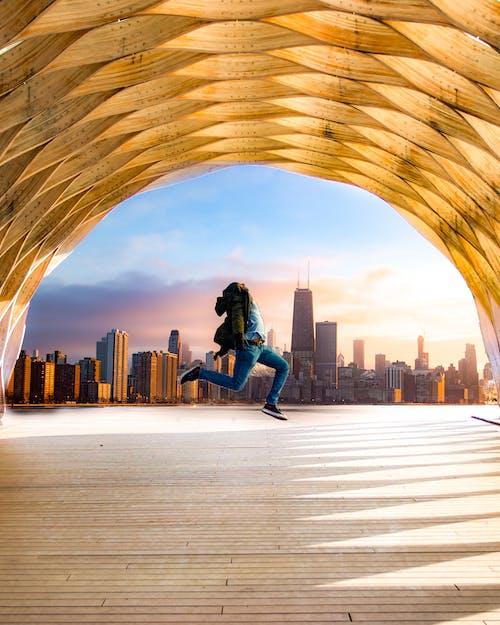 Бесплатное стоковое фото с photoshop, зоопарк линкольн парк, портрет, прыжок