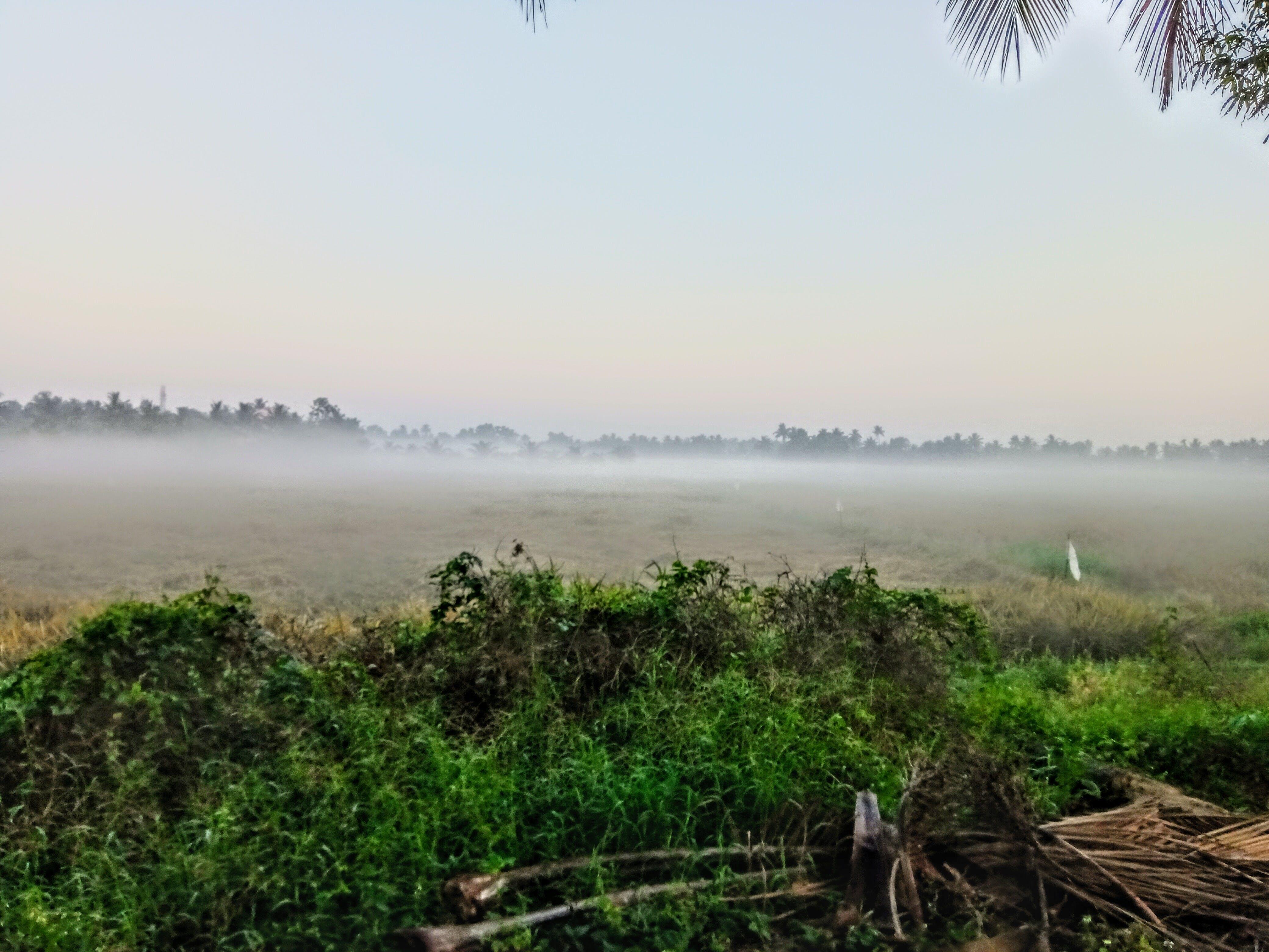 Free stock photo of Foggy landscape, foggy morning, Phone Photography
