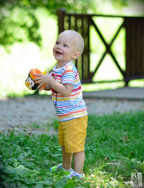 Foto d'estoc gratuïta de bebè, bufó, colorit, dempeus