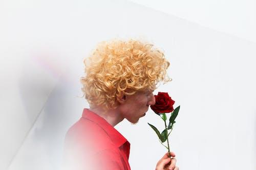 Homem Segurando Rosa Vermelha