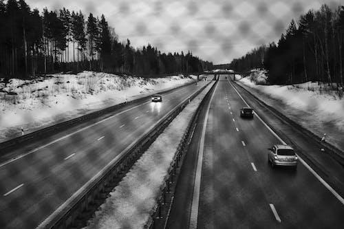Foto stok gratis jalan, mengemudi, mobil