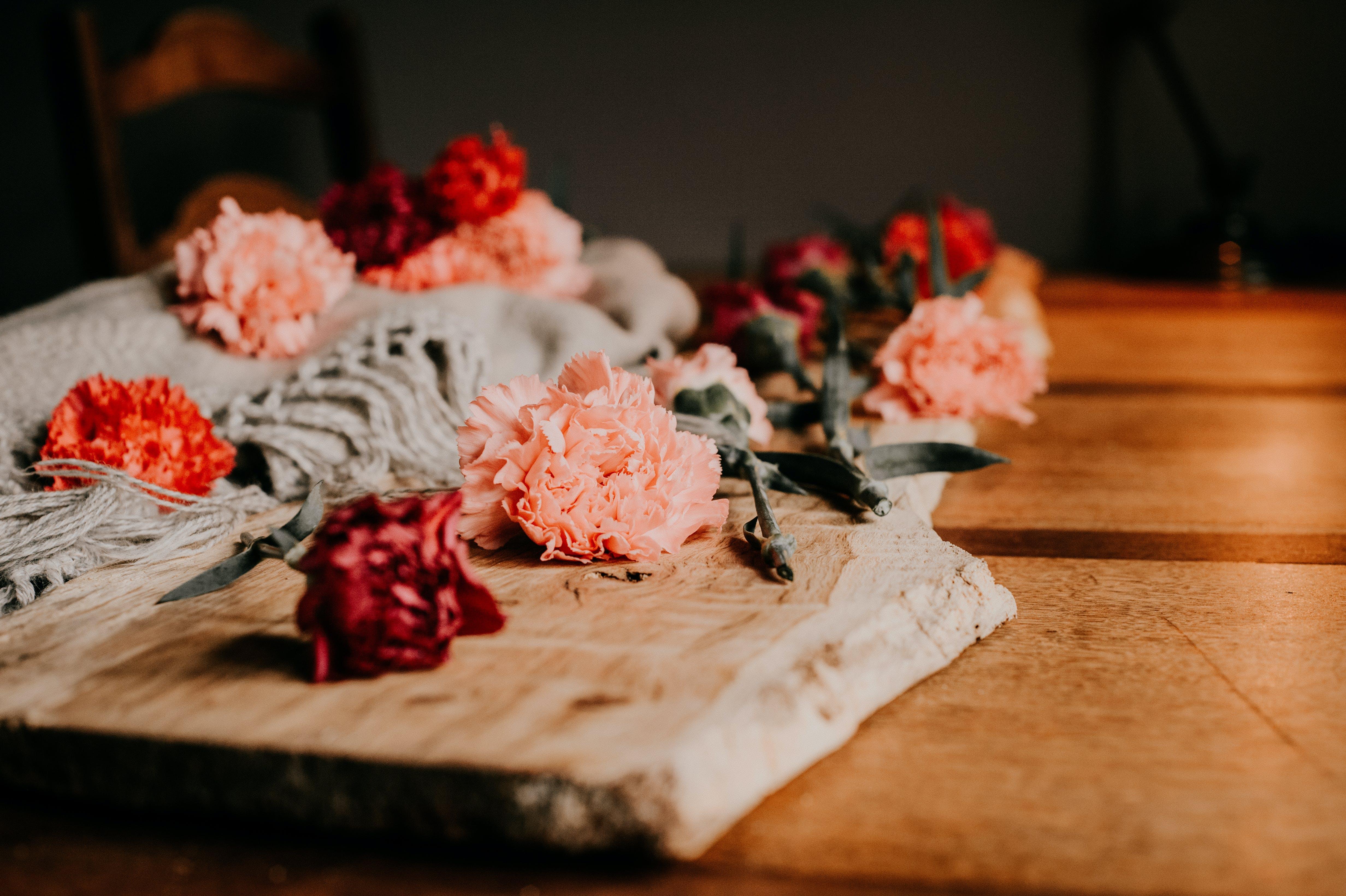 Gratis lagerfoto af blomster, blomster kunst, blomstrende, bord